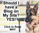 Should I have a Blog on My Site?
