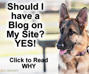 should i have a blog