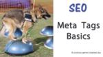 SEO and Meta Tags