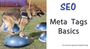 Meta Tags & SEO for Dog Trainers